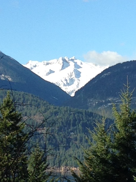 View-Kokanee-Glacier-from-Tara-Shanti-1