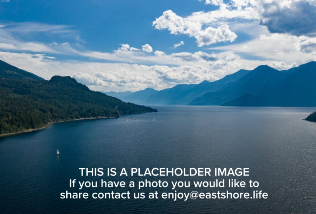placeholder.png.web