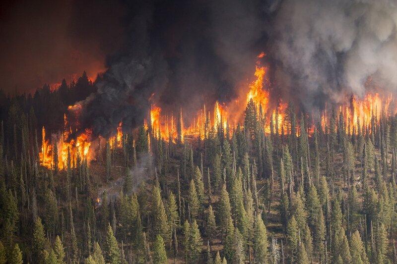 rsz_forest-fire-3782544_1280
